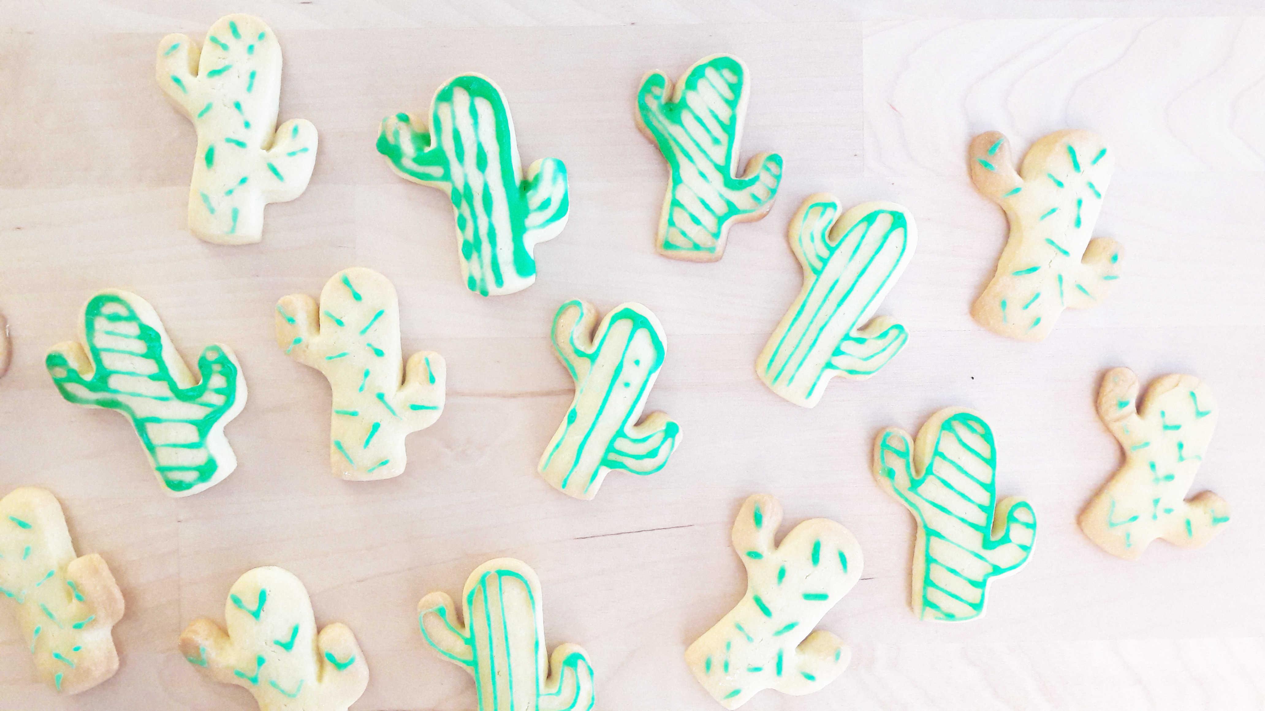 Medium recette biscuits cactus 8